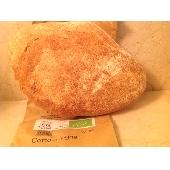 Pane Biologico di tipo Pugliese cotto in forno a legna - 500 gr.