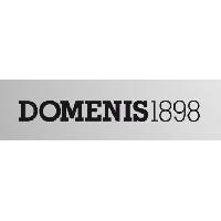 Logo Domenis