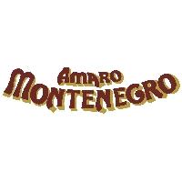 Logo Montenegro