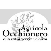 Logo Occhionero