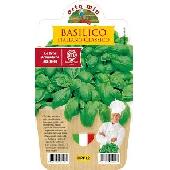 Italian Basil (Genoese) Pot Plant 10cm  - Orto mio