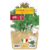 Wild Fennel -  Pot plant 14 cm - Orto mio