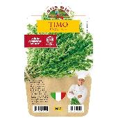 Thyme - Pot Plant 14 cm - Orto mio